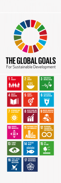 global_goals_-_d_rfolie_1